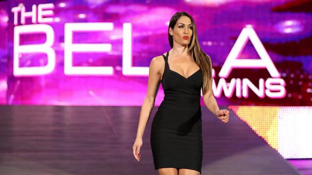Nikki Bella 2015