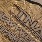 Moose réintroduit le titre mondial des poids lourds TNA et le remporte