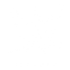 Réseau WWE - 841 | Chaînes sportives