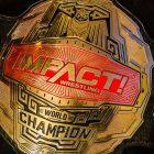 Le championnat du monde des poids lourds de la lutte contre l'impact