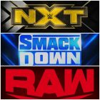 WNW Top 10 - Superstars qui ont quitté NXT trop tôt
