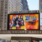 La WWE et l'AEW pourront bientôt gérer des salles de l'État de New York