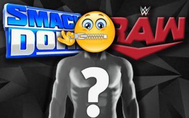 La WWE restreint les informations aux talents sur leurs propres plans créatifs