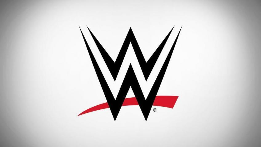 WWE's ongoing legal battle over a massive concussion lawsuit isn't over yet