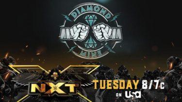 Aperçu de WWE NXT 6.22.21 - WWE Wrestling News World