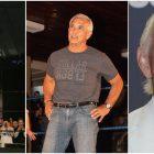 Ricky Steamboat a presque lutté CM Punk dans Ring of Honor... jusqu'à ce que Ric Flair l'arrête