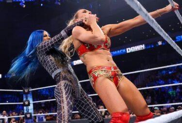 WWE et Blue Bloods mènent vendredi